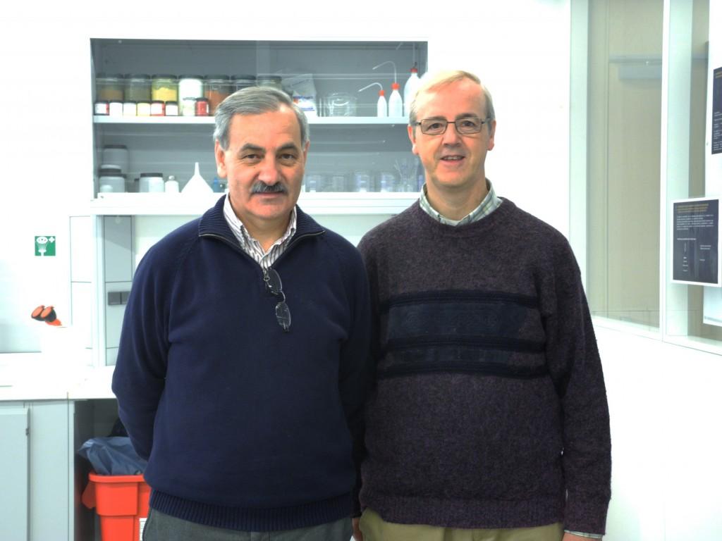 Visita de Pedro Pozas al Centro Nacional de Investigación sobre la Evolución Humana de Burgos